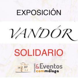 Vandór solidario  28/10/2016. Ilustre Colegio Oficial de Médicos de la Provincia de Málaga